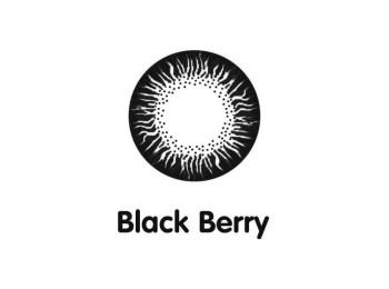 Áp tròng màu Maxim 1 ngày Black Berry