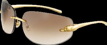 Kính mát mạ vàng 18K Cartier T8200811